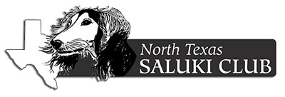 North Texas Saluki Club